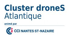 Logo CLUSTER DRONE